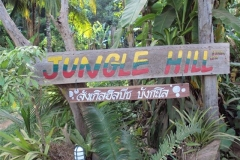 junglehill-location-06